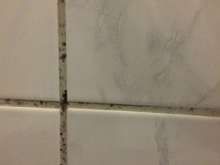 Duschkabine reinigen: Fugen von Schmutz befreien.