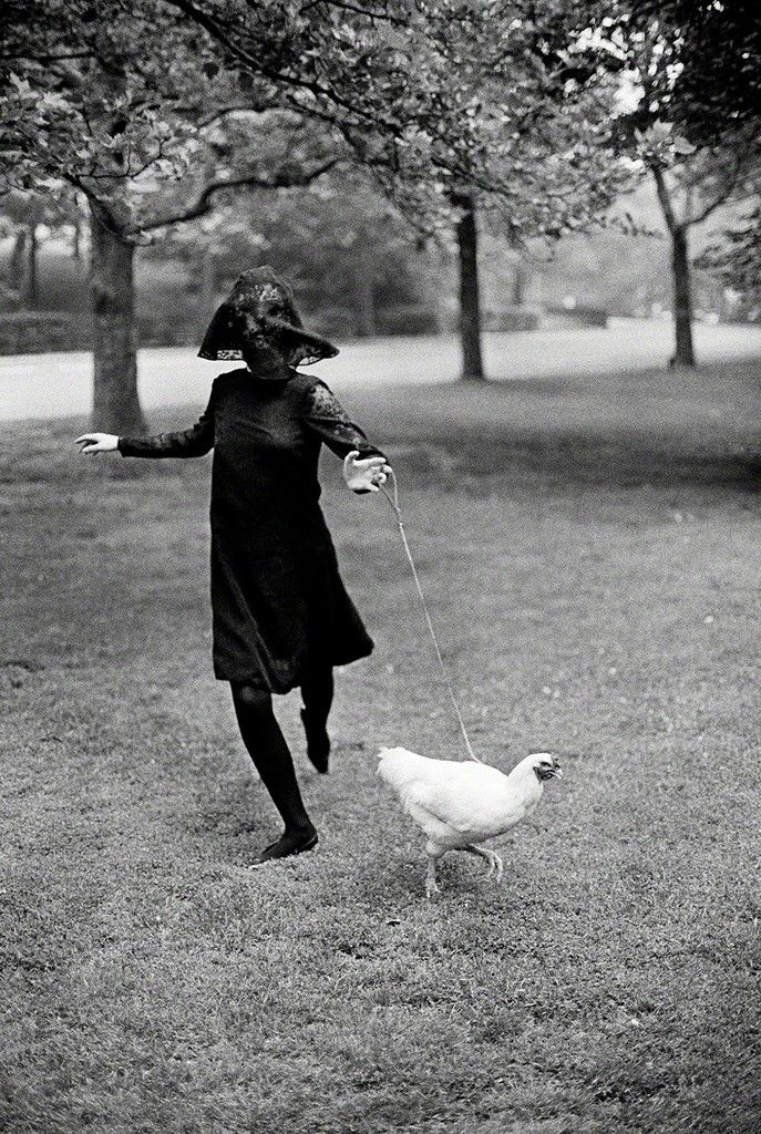 Chicken, 1964 - by Jerry Schatzberg (1927), USA