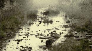 The Darkness in The Light • thesebooksareolderthanyou:  Tarkovsky