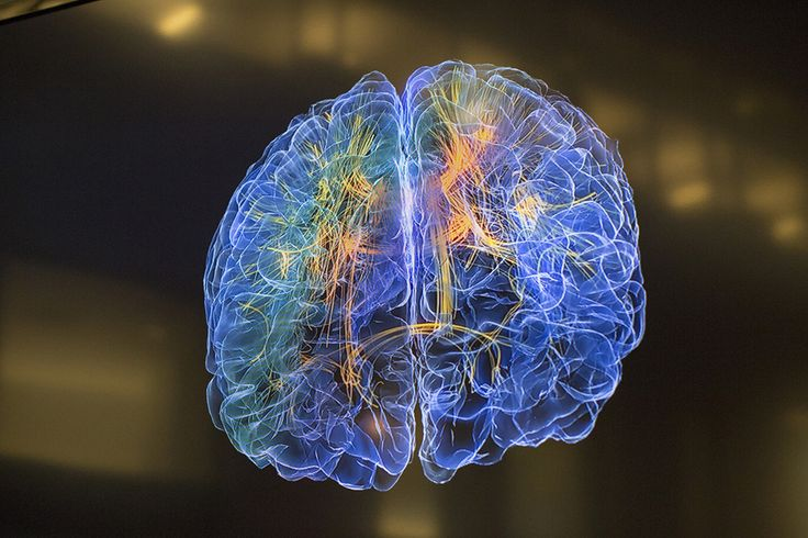 UCSF and UCSD's Glass Brain project visualizes real-time brain activity.
