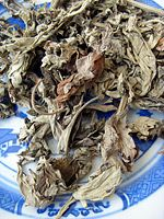 Chinese Herbal Treatment for Dysfunctional Uterine Bleeding (DUB)