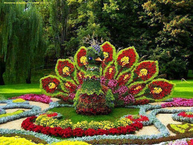 Hasil gambar untuk Dubai Miracle Garden - A Mosaic of Motley Flowers