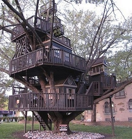 Creative Home3 Homes Treehouses Pinterest Tree