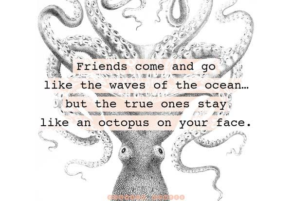 The 104 Best Friendship Quotes Ever - Curated Quotes