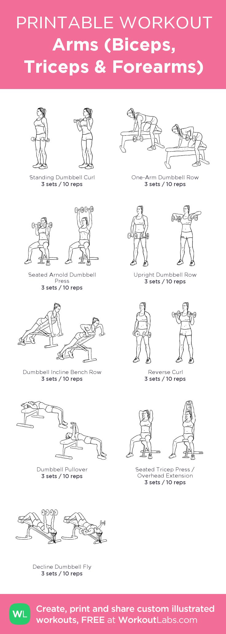 Arms (Biceps, Triceps & Forearms)