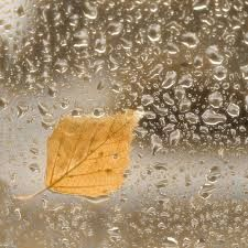 Картинки по запросу осенний дождь за окном | Живопись ...