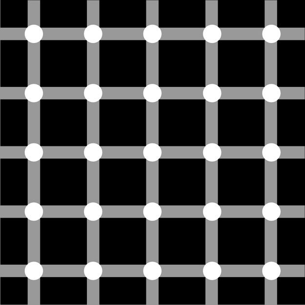 Can you chase the dots? Scintillating Grid, Physiological illusion caused by after image on eyes