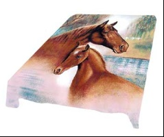 Colt and Mare Horse G066 Korean Mink Queen Blanket