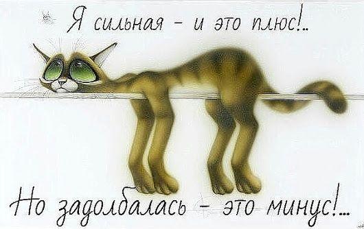 Алена Шушпанова - Google+