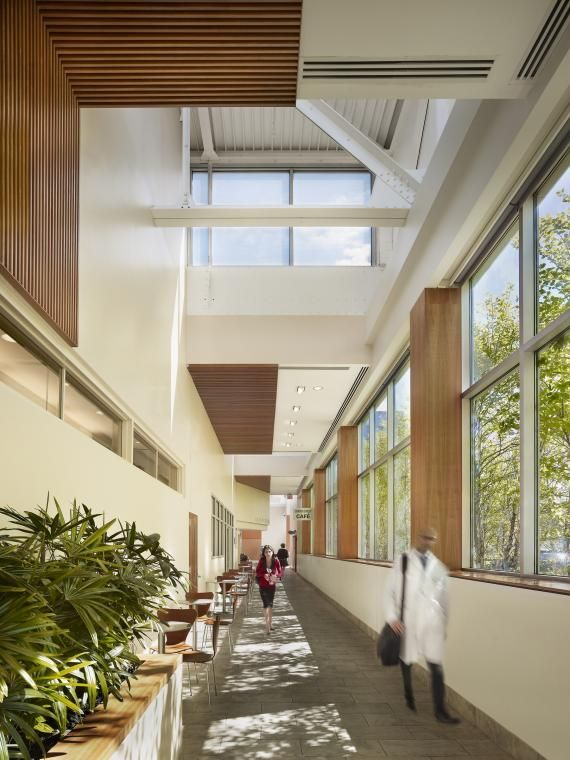 Chemotherapy Room Design: 35 Best Healing Gardens Images On Pinterest