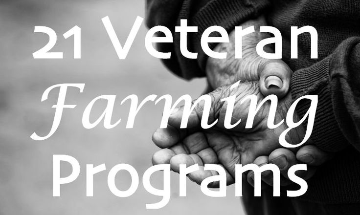 This Veteran's Day, Food Tank brings you 21 organizations from around the world that are working to help veterans heal their wounds through farming and agriculture.