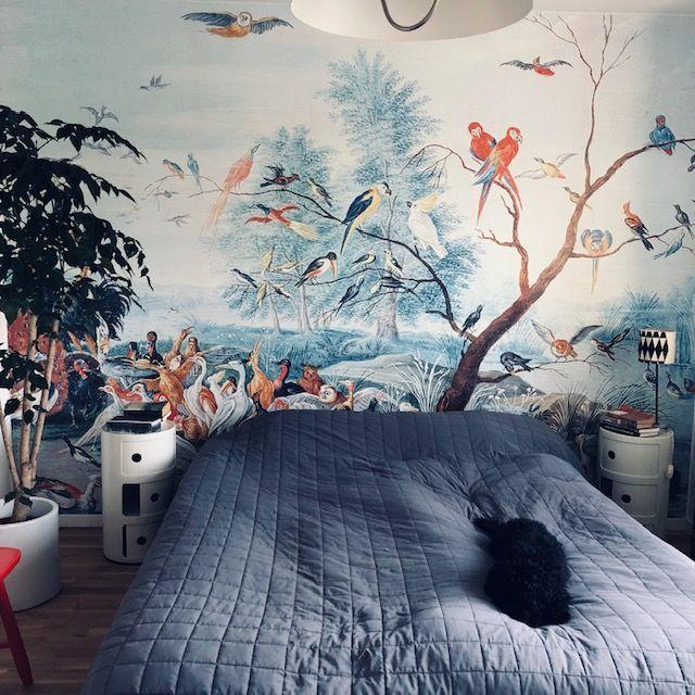 Le Papier Peint Panoramique Tropical Birds D Au Fil Des Couleurs
