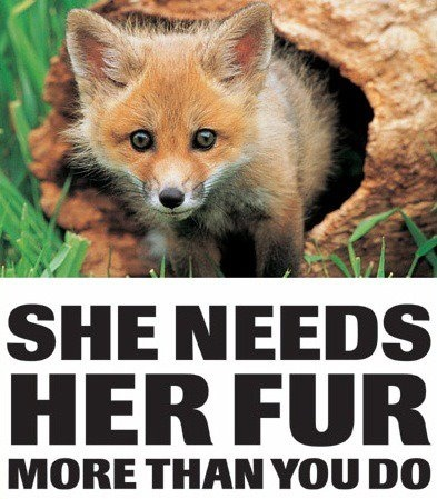 people for cruelty free fashion <3