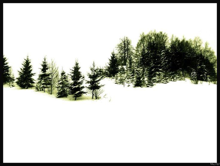 In solitude...