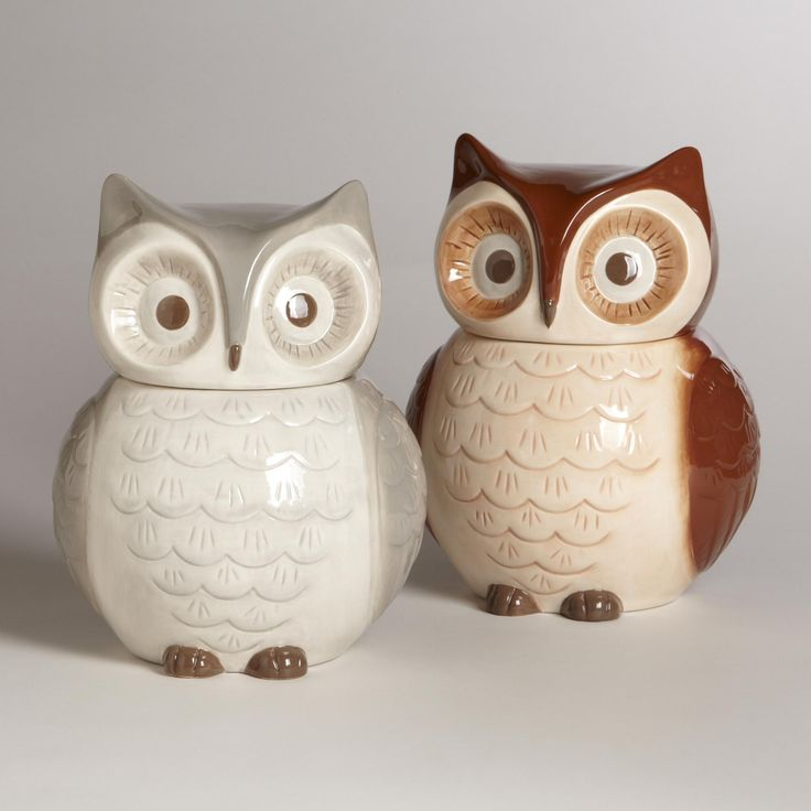 Storing your cookies is a hoot with our set of two Owl Cookie Jars. The owls, brown and gray in beautifully realized ceramic, can be used to hold other kitchen staples like candy, cereal, flours or grains. With owl heads serving as lids, the cookie jars are an adorable display for the kitchen or on the counter, together or separately.