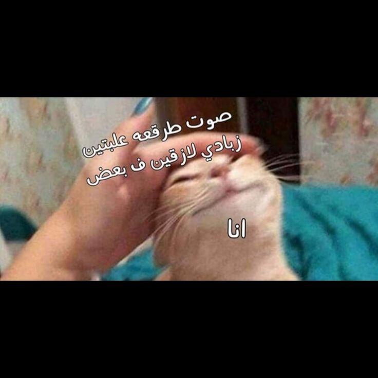 ضحك جزائري ضحك حتى البول ضحك معنى ضحك اطفال فوائد الضحك ضحك Meaning الضحك في المنام نكت قصيرة نكت سوري Funny Arabic Quotes Funny Picture Jokes Fun Quotes Funny