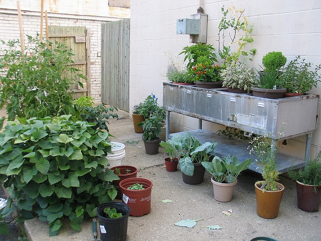 91 best images about raised bed gardening on pinterest gardens raised beds and container - Vegetable gardening in containers ...