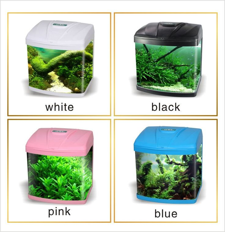 15Litre Small Starter Aquarium Fish Tank Tropical Coldwater LED Lighting UK in Pet Supplies, Fish & Aquarium, Aquariums | eBay