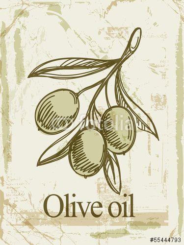 Вектор: Olive oil label