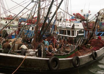 El ministro de Pesca marroquí declara que la sentencia no prohibe claramente pescar en el Sáhara