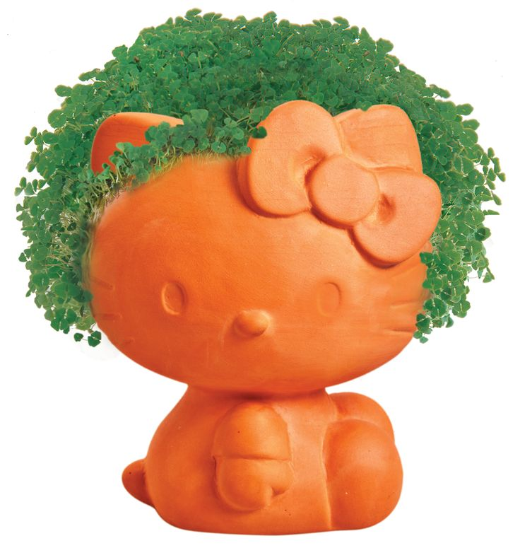 Chia Pet Hello Kitty Decorative Pottery Planter Easy To Do And Fun To Grow Novelty Gift As Seen On Tv Walmart Com Hello Kitty Hello Kitty Items Chia Pet