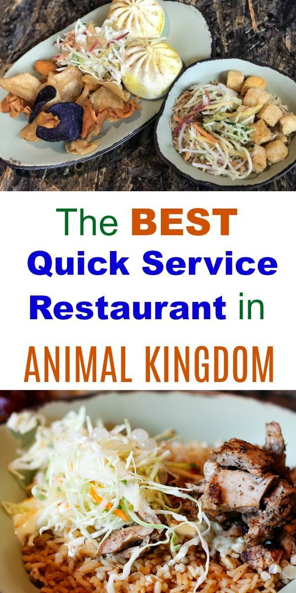 Walt Disney World Restaurants And Dining The Best Food At The Animal Kingdom In 2018 Is At Satuli Cant Disney World Food Animal Kingdom Disney Disney Dining