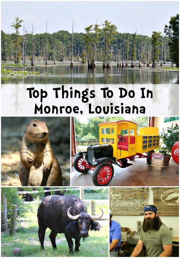 Things To Do In Monroe, Louisiana beyond the Duck Dynasty tour to the Duck Commander. From the Louisiana Purchase Gardens and Zoo to the Biedenharn Museum and more! Check out our recommendations and photos.