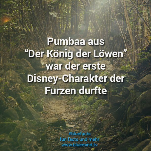die besten 17 ideen zu walt disney zitate auf pinterest disney kranz zitate zum thema. Black Bedroom Furniture Sets. Home Design Ideas