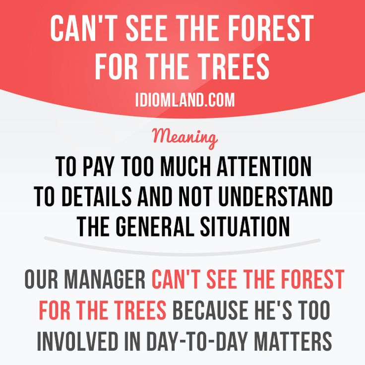 """""""Can't see the forest for the trees"""" means """"to pay too much attention to details and not understand the general situation"""".         Repinned by Chesapeake College Adult Ed. We offer free classes on the Eastern Shore of MD to help you earn your GED - H.S. Diploma or Learn English (ESL).  www.Chesapeake.edu"""