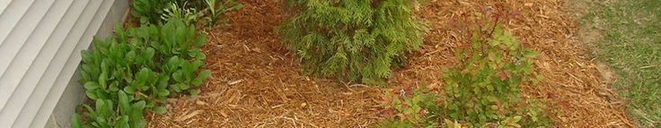 Landscaping: Tree Service, Lawn Maintenance, Snow Removal