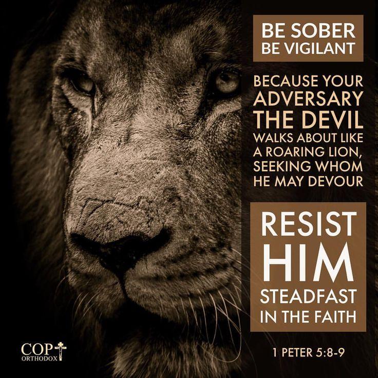 The 25+ best Lion bible verse ideas on Pinterest | Bible ...