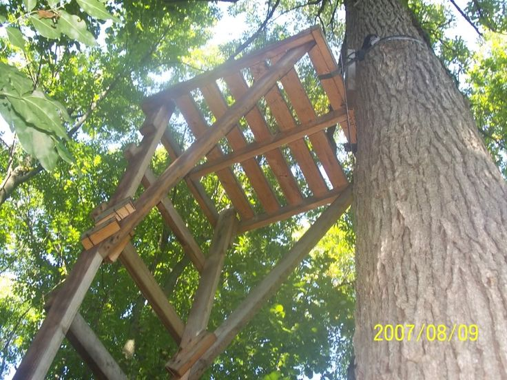 Best 25 homemade tree stand ideas on pinterest cheap for Best deer stand plans