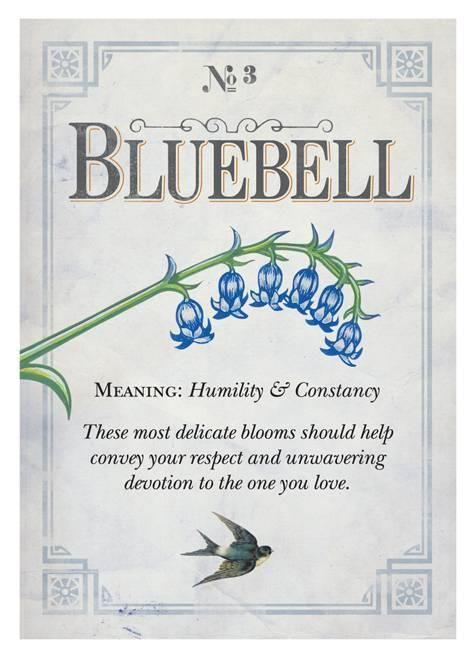 Penhaligon's Guide to Floriography   Bluebell