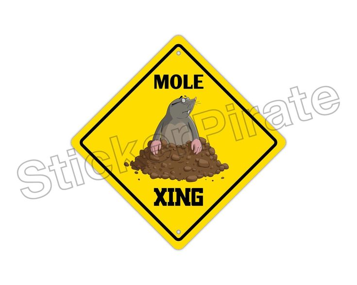 "Aluminum Mole Crossing Funny Metal Novelty Sign 12""X12"""
