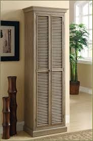 Image result for tall dvd storage cabinet
