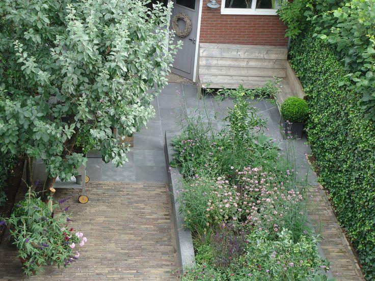 Betonnen bak   Schellevis beton   oude waaltjes   VT wonen buitentegels   oude fruitboom   gemengde border   hoekbank steigerhout   #eigentuin...