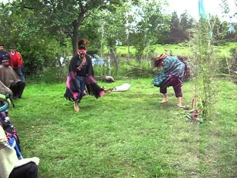 baile ave mapuche 1.avi - YouTube