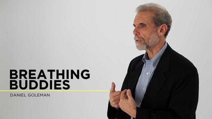 Daniel Goleman: Breathing Buddies