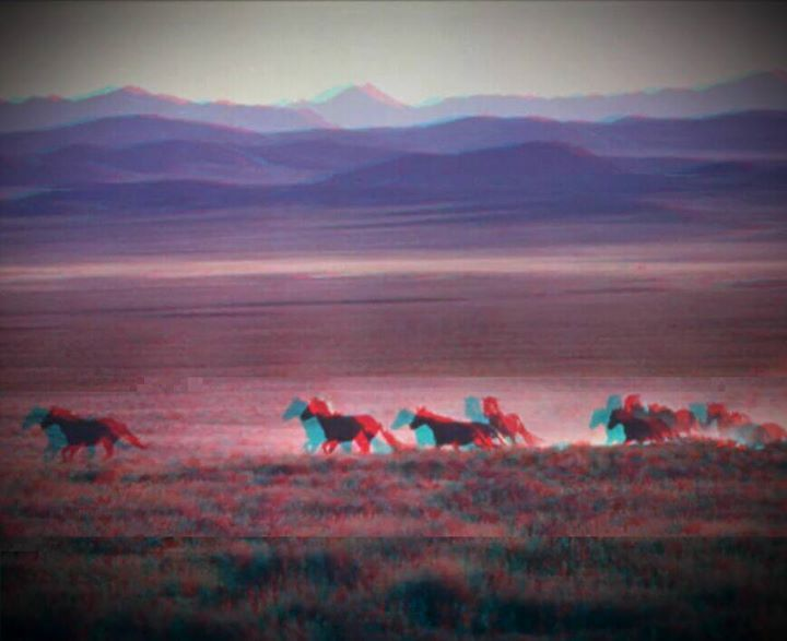 #plain #horses #glitchart