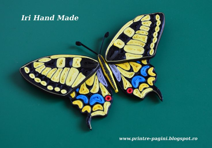 kiddo's blog: Papilio Machaon, quilled version