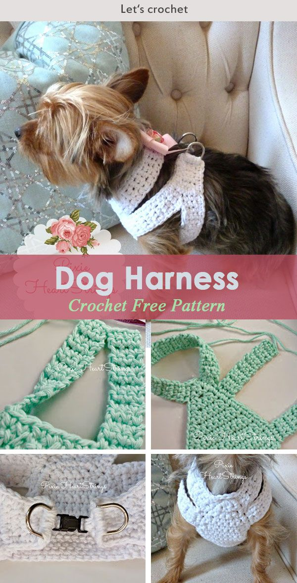 A Crocheted Dog Harness For Your Tiny Dog Free Pattern Crochet