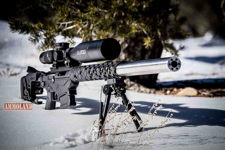Witt Machine & Tool Integrally Suppressed Ruger Precision Rifles