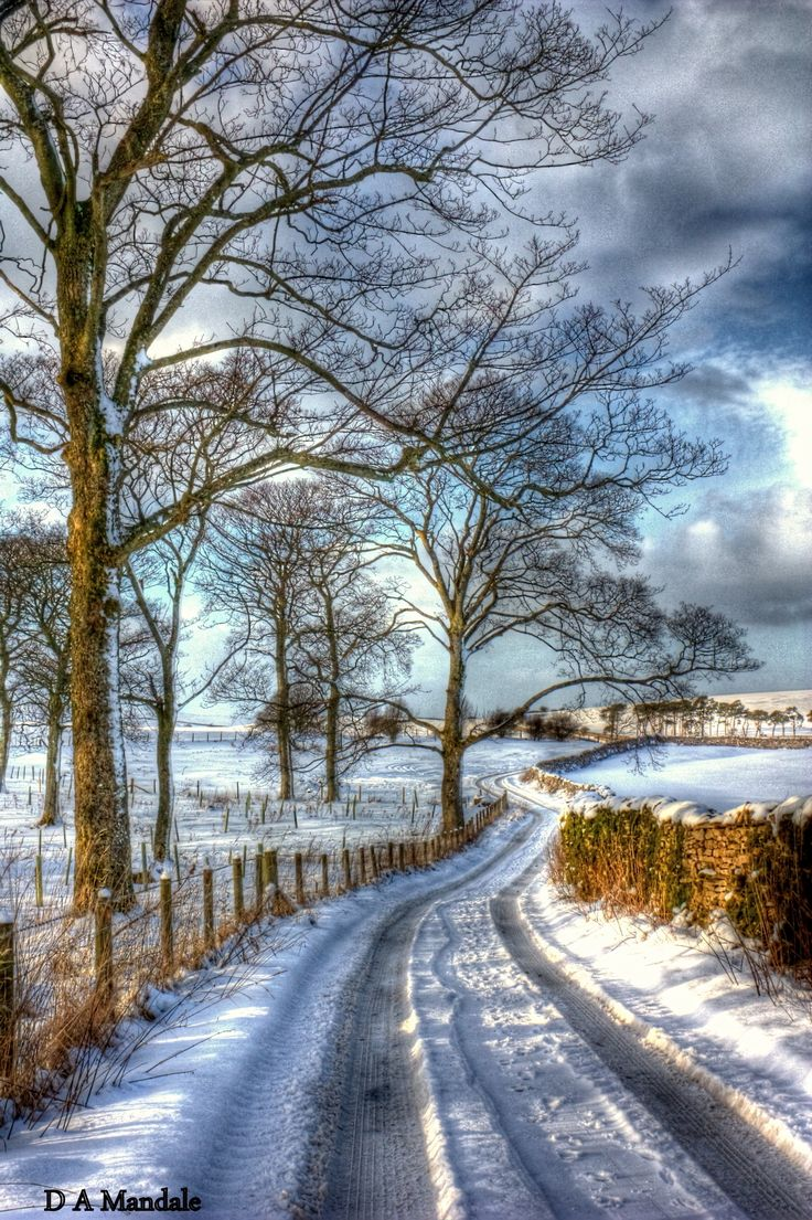 Snowy country lane (near Wharton, Kirky Stephen, England) by D A Mandale