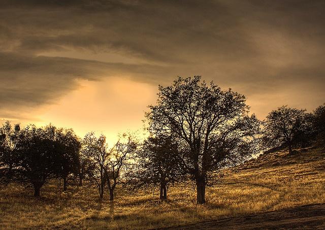 Tehachapi,California,US