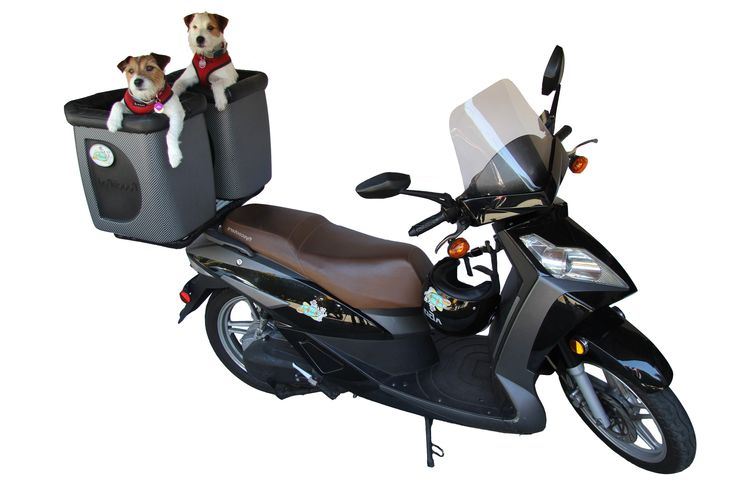 Poochpod Mobile Pet Carriers For Bicycles Motor Scooters