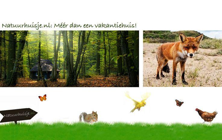 Accomodaties is een natuurlijke omgeving in Nederland en in het buitenland