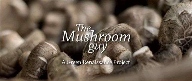Gary 'The Mushroom Guy' explained how easy it is to grow your own Shiitake mushrooms at home, and more surprisingly, told us about how eating these mushrooms has had a positive impact on his health.