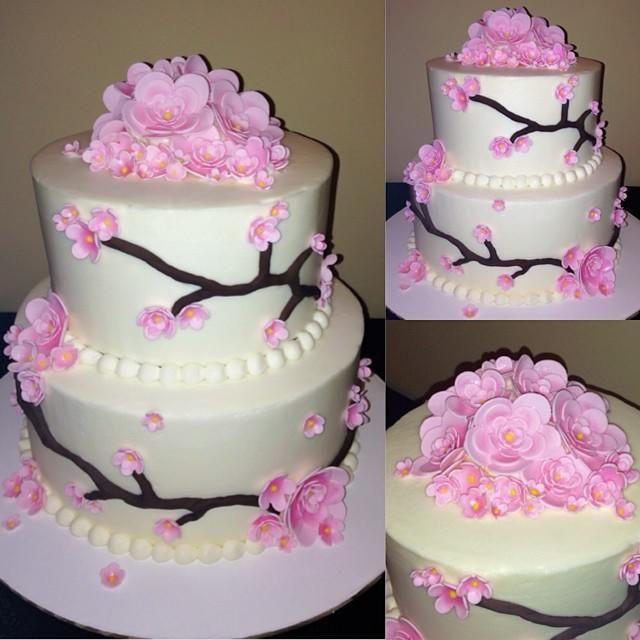 dolcebakery | Cakes