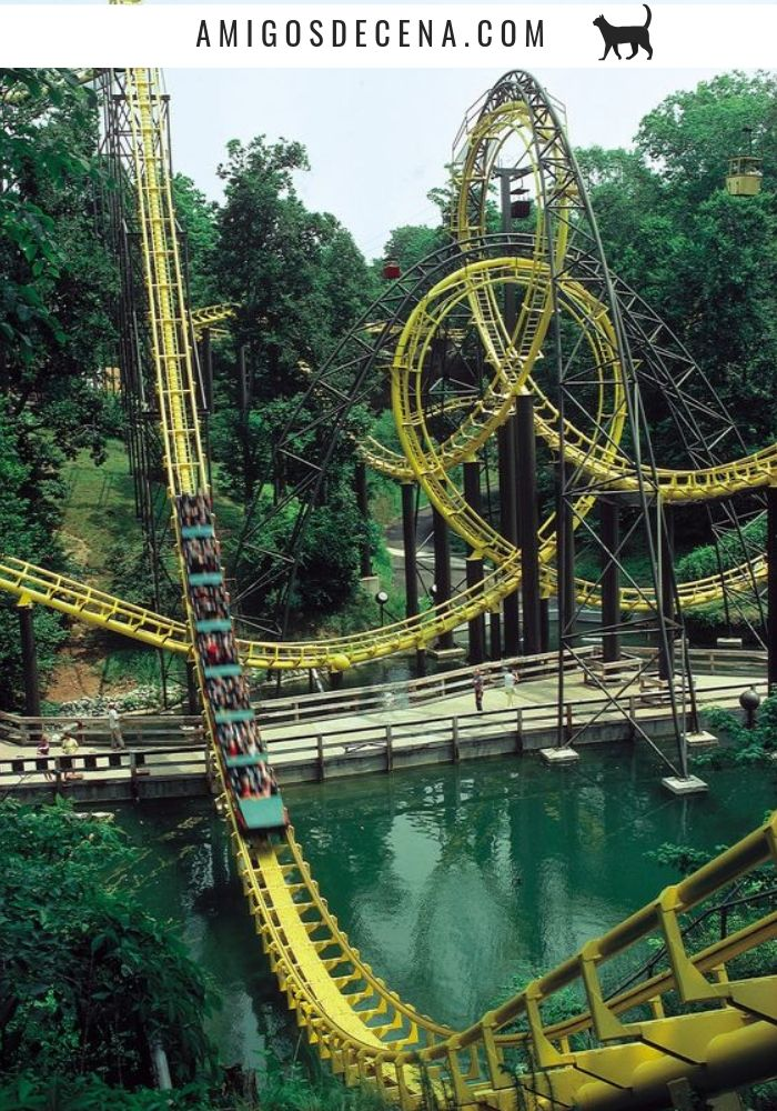 Busch Gardens Ride Height Requirements Inches