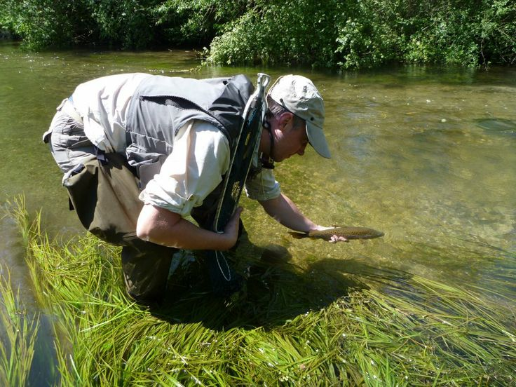 53 best chalk stream fishing images on pinterest fishing for Best trout fishing in new hampshire